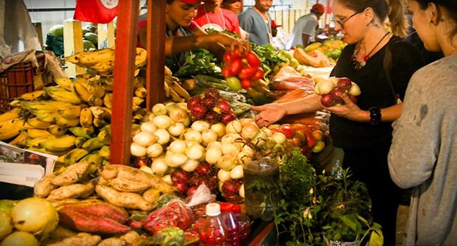 diferença entre os alimentos orgânicos e agroecológicos