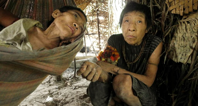 Mortes de índios isolados traumas de contato sociologia saúde