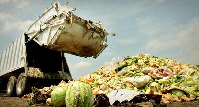 Supermercados desperdiçam bilhões alimentos frutas verduras