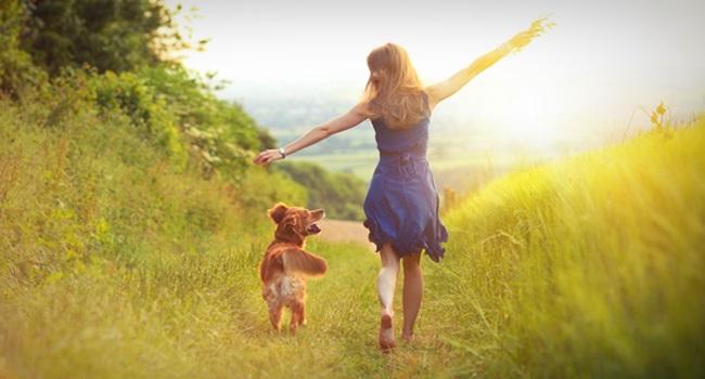 terapeutas fazem ficar feliz paz ansiedade