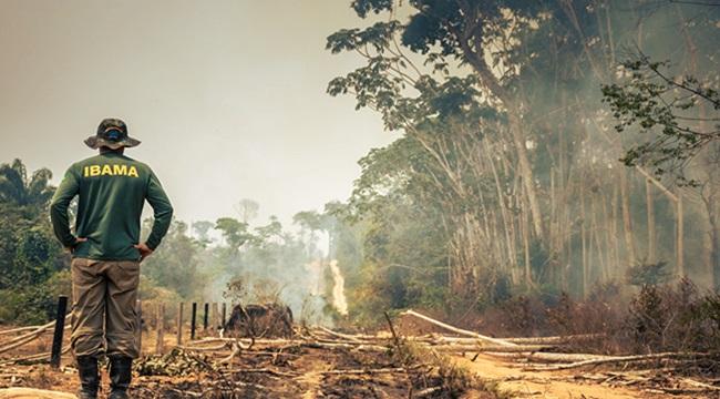 Ambientalistas pânico ascensão Bolsonaro meio ambiente