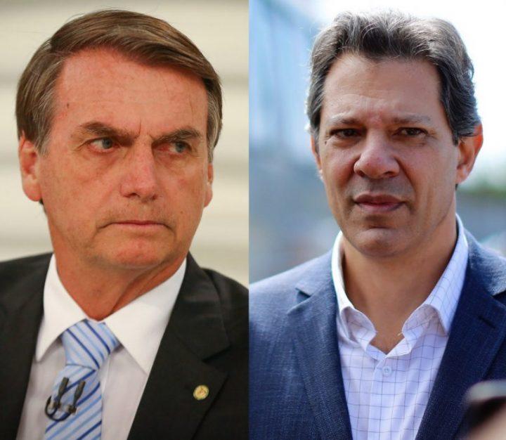 bolsonaro haddad fake news