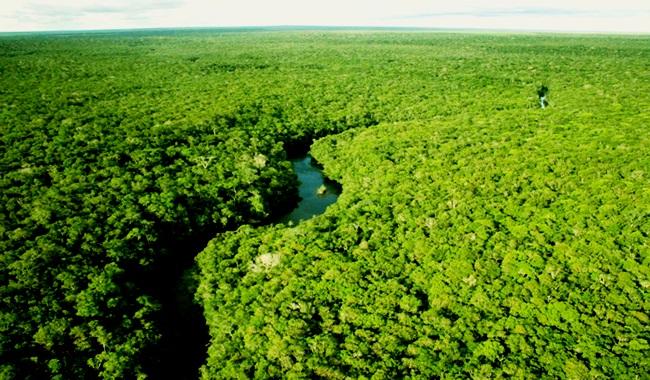 Propostas Haddad Bolsonaro meio ambiente eleições 2018