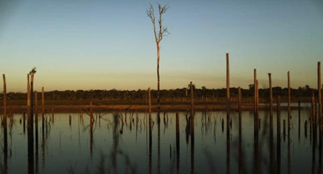 fusão de 2 ministérios arruinar Brasil meio ambiente agricultura bolsonaro