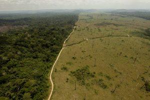 duas-alemanhas-ja-foram-desmatadas-na-amazonia-brasileira