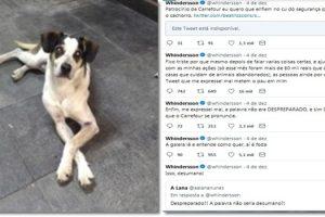 youtuber-seguidores-cachorro-carrefour