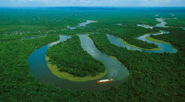 Amazônia aproxima do ponto de ruptura cientista desmatamento