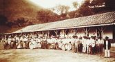 historia-escravidao-brasil