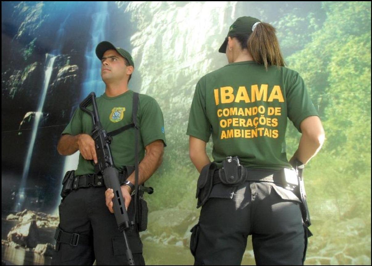 Bolsonaro Ibama Meio Ambiente