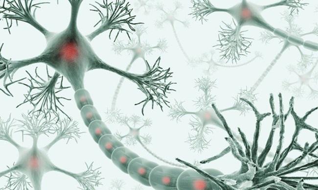 exercício capaz de criar novos neurônios em qualquer idade