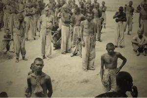 holocausto-brasileiro-o-genocidio-no-maior-hospicio-do-brasil