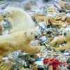 ursos-polares-famintos-invadem-cidade-na-russia