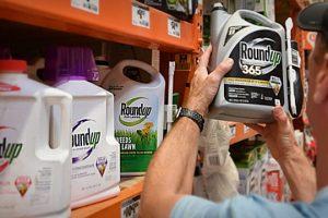 herbicida-mais-usado-no-brasil-causa-cancer-conclui-juri-dos-eua
