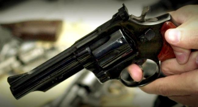 Armas de fogo Direito individual Interesse coletivo violência segurança bolsonaro