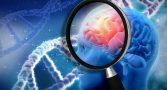 gigante-farmaceutica-ocultou-que-um-de-seus-farmacos-poderia-prevenir-alzheimer