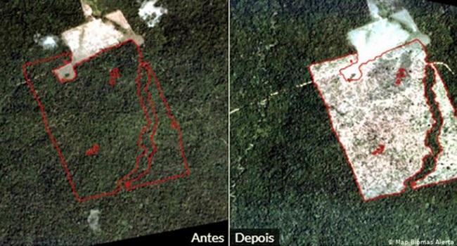 Heleno mentiu dados sobre desmatamento Amazônia manipulados