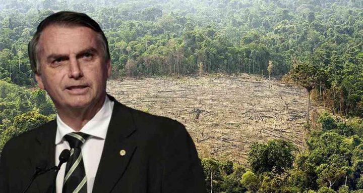 Bolsonaro Amazônia Inpe