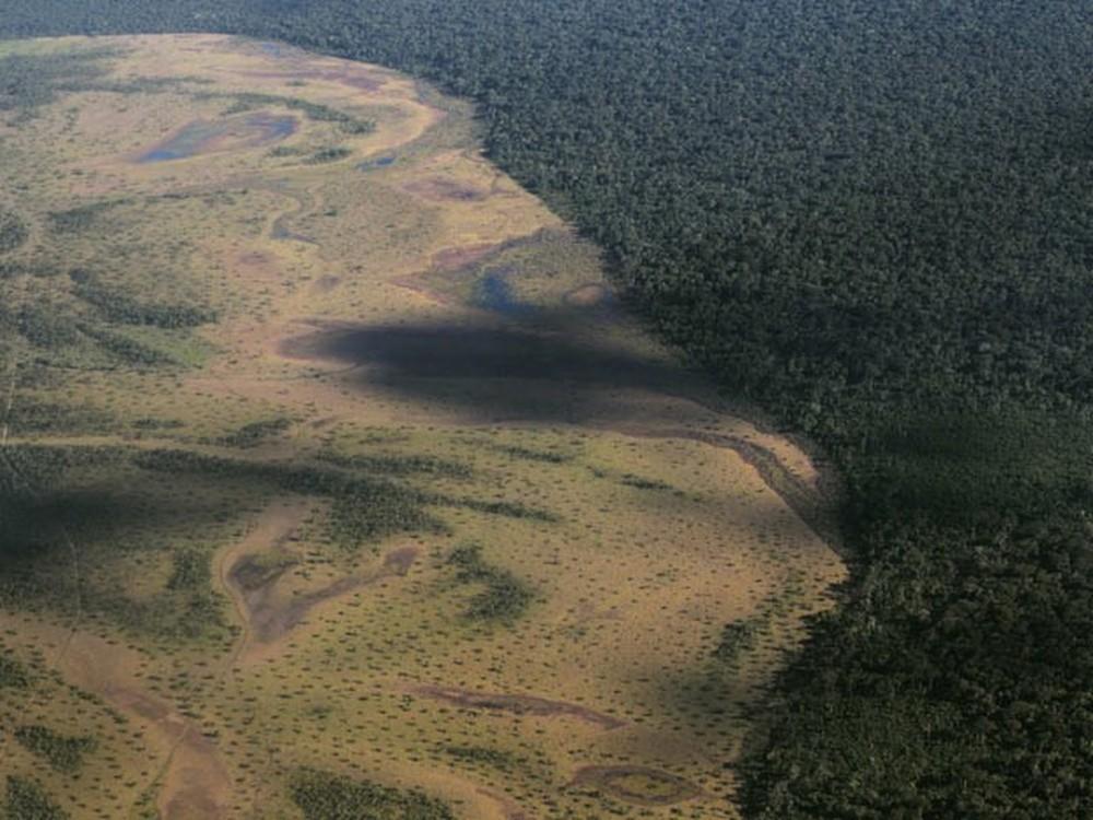 desmatamento amazônia bolsonaro