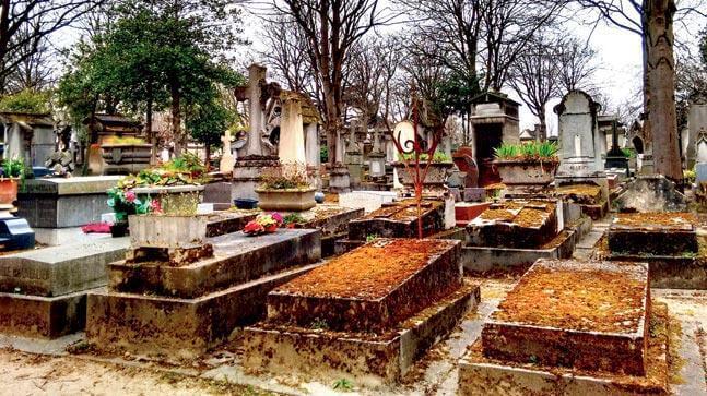 homem desenterra avó cemitério