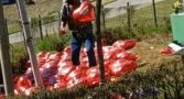 homem-baloes-brumadinho