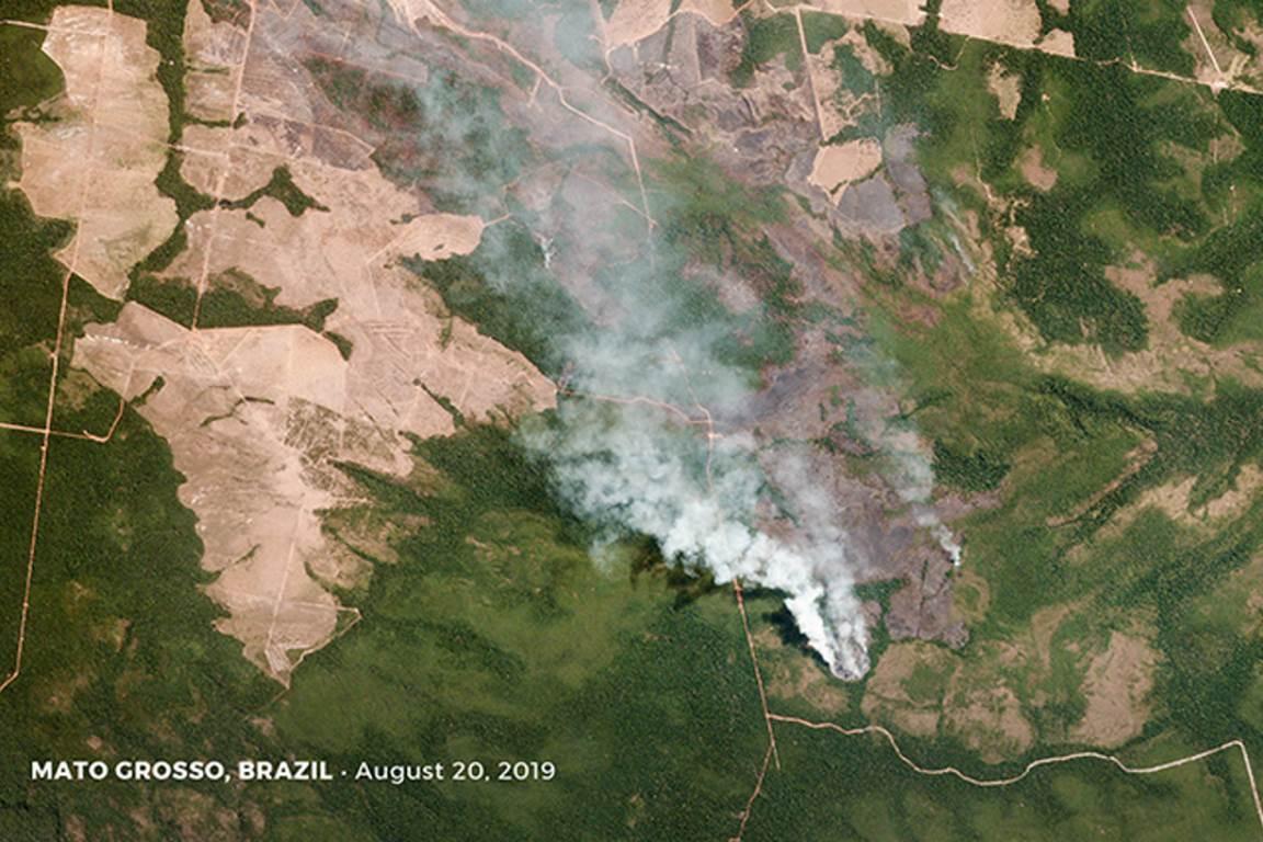 noruega sistema florestas planet