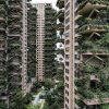 predios-china-plantas