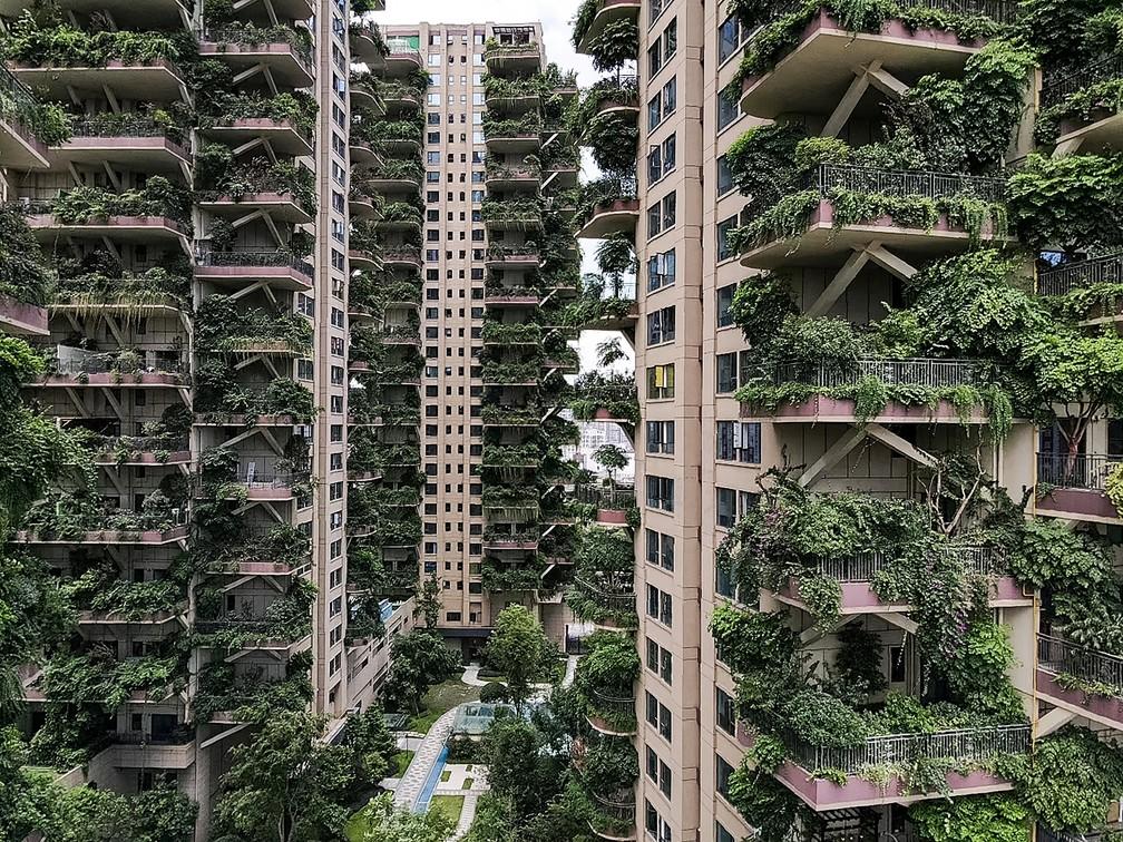 plantas invadem prédios china