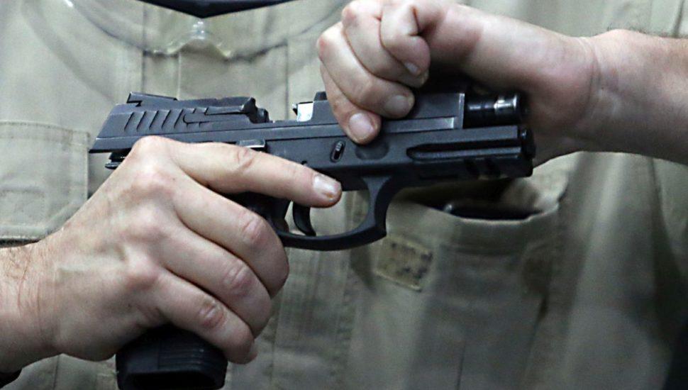 bolsonaro armas de fogo