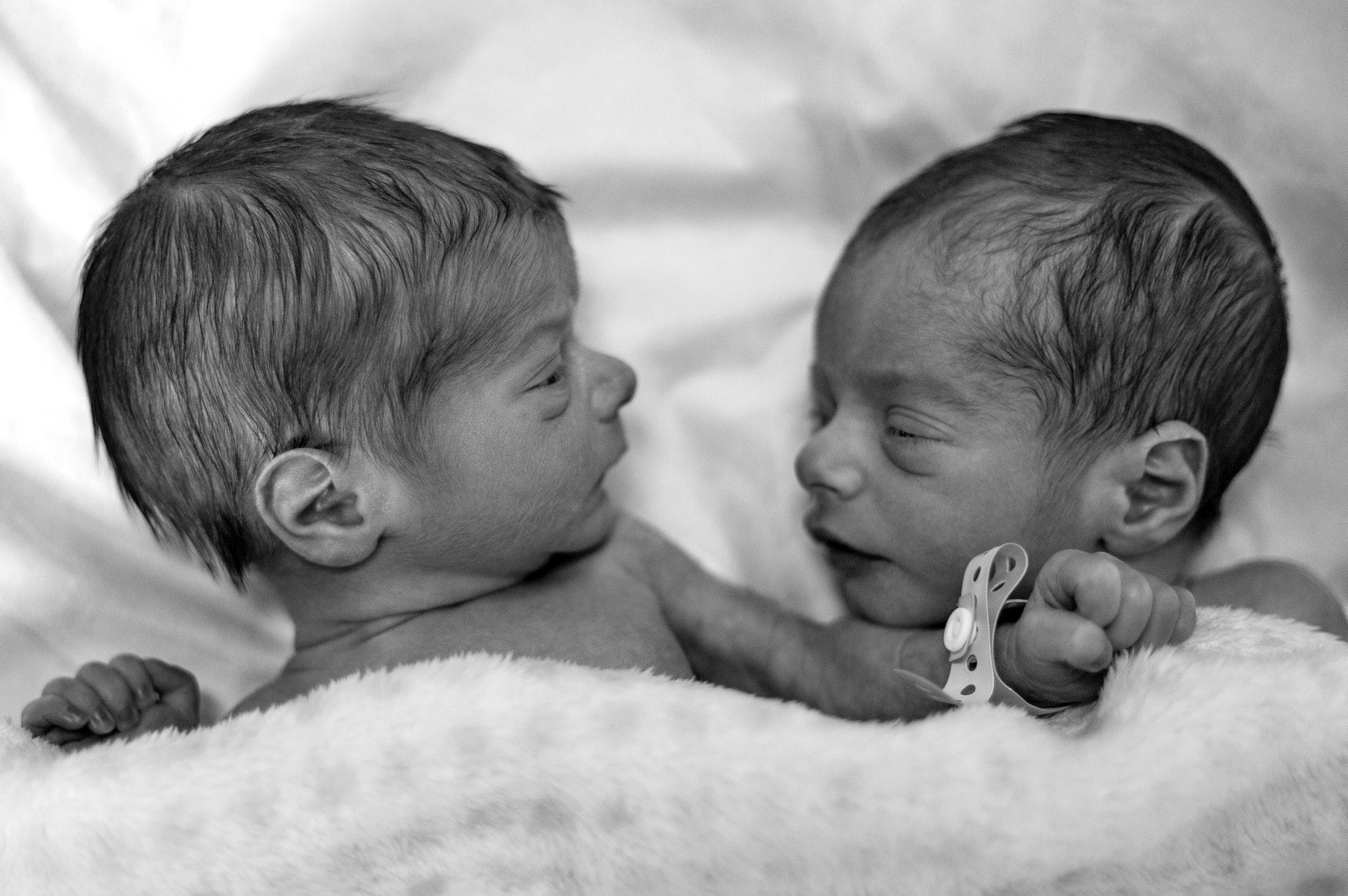 gêmeos pais diferentes