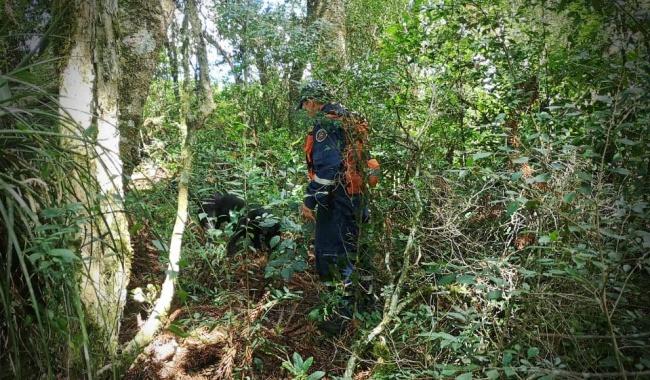 Menina encontrada morta amarrada em árvore polícia feminicídio