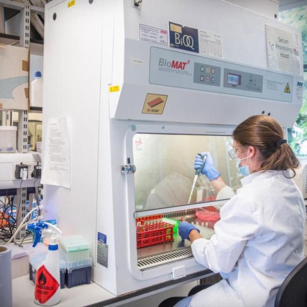 Estudo vacina de Oxford funciona contra variante brasileira