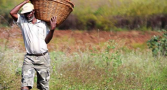 papel-agricultura-familiar-superacao-crise-pandemia