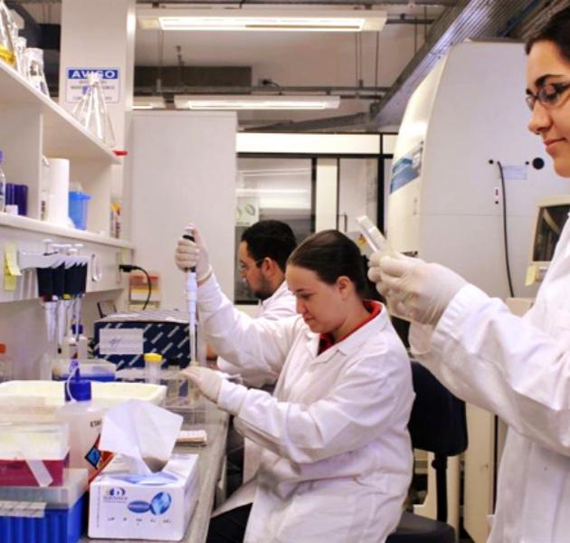 Pesquisadores internacionais divulgam carta aberta cientistas brasileiros usp ciência