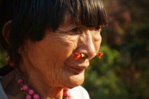 cerebro-indigenas-amazonia-envelhece-mais-lentamente-estudo