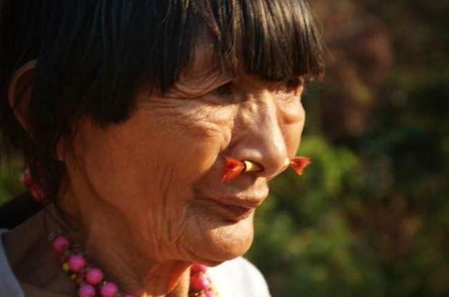 Cérebro indígenas Amazônia envelhece mais lentamente estudo