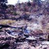 fazendeiro-provocou-incendio-pantanal-multado-milhoes