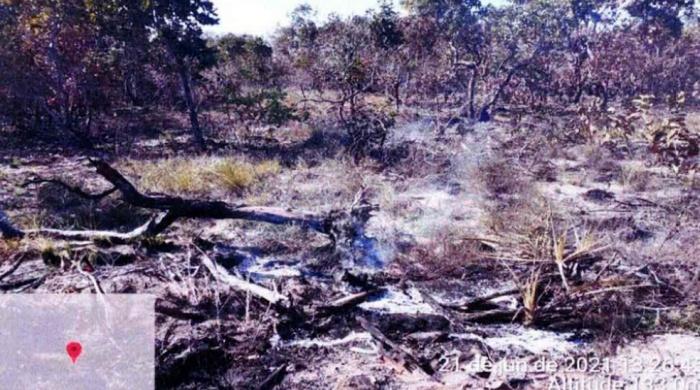 Fazendeiro provocou incêndio no Pantanal multado milhões