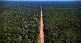 nova-transamazonica-reconstrucao-br-319-sem-estudo-impacto-ambiental