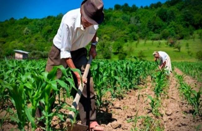 Desafios nova geração políticas agricultura familiar covid governo bolsonaro