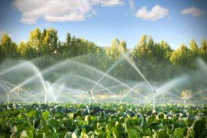 toda-agua-consumida-brasil-utilizada-agronegocio