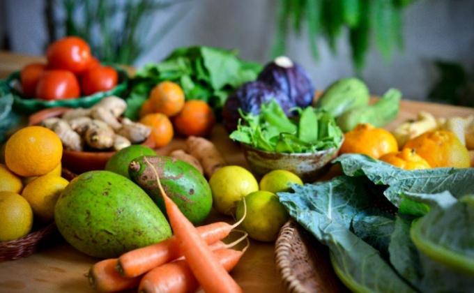 Comida sem agrotóxicos precisa acessível Centro de Agroecologia